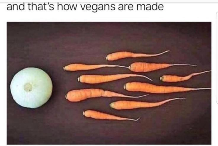Vegan sex life